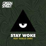 Stay Woke (ft. Quelle Chris)